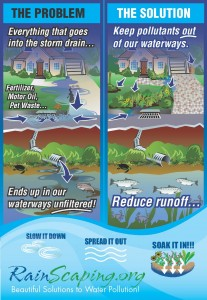 Stormwater Poster